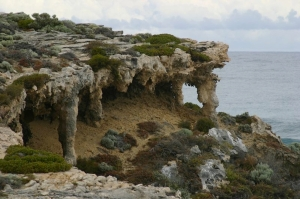 Salmln Point limestone outcrop (c) Bev Naismith