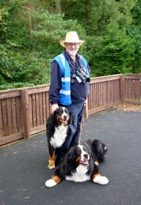 Multi skilled volunteer Roger dog sits for a visitor! (c) Joanna Dailey