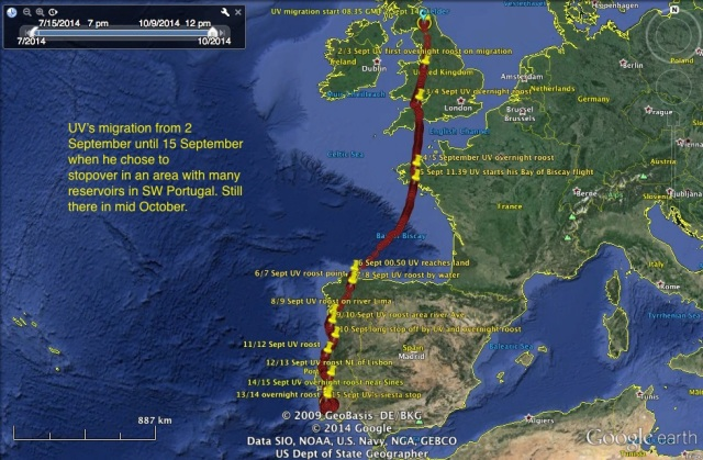 UV's migration from 2 Sept to mid Oct on stopover in SW Portugal