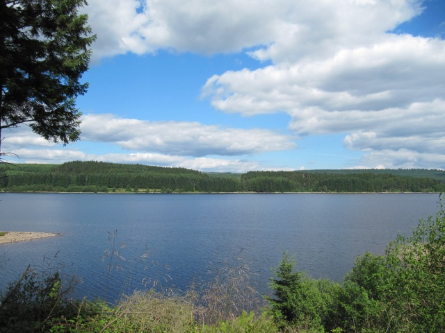 A view across Kielder Water in the general direction of Nest 1, YA's home (c) Vivien Finn