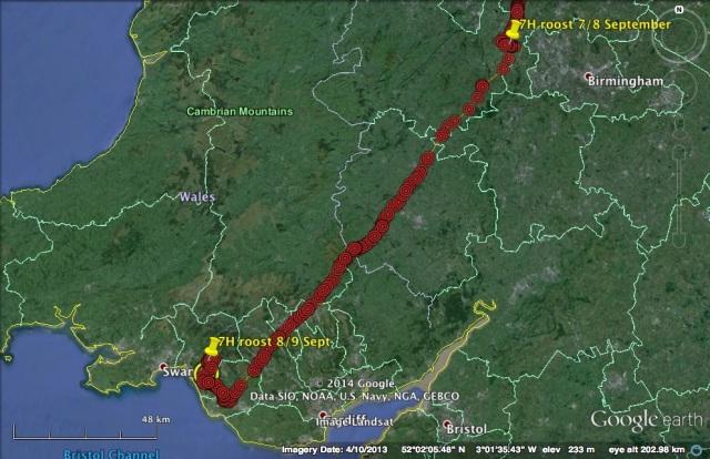7H travel on 8 Sept