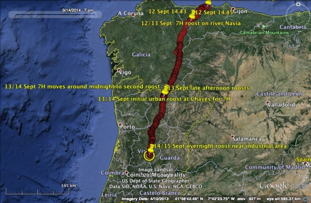 7H travelling generally SSE through Spain and Portugal