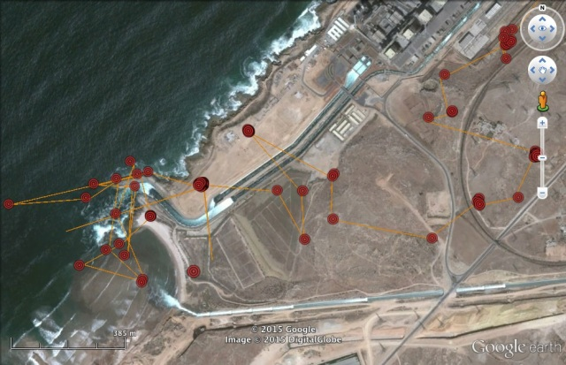 On 28 March 7H paid most attention to the outfall from the power station
