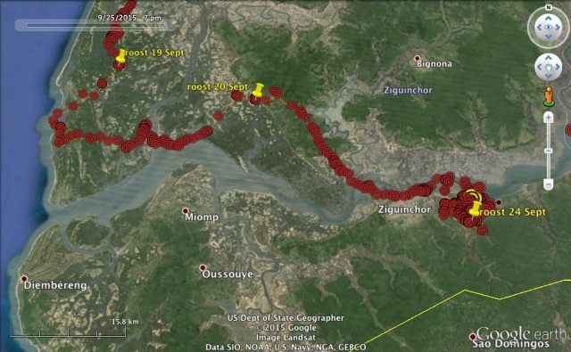 VY's route along the Casamance River