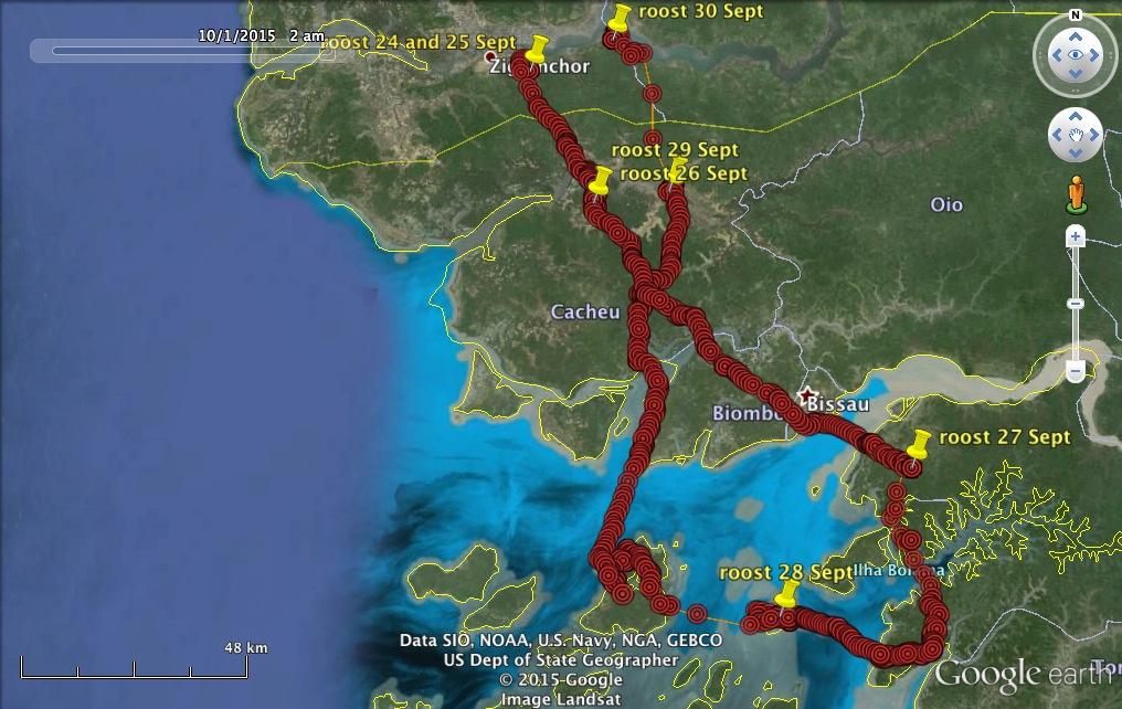 VYs exploration of Guinea Bissau Kielder Ospreys