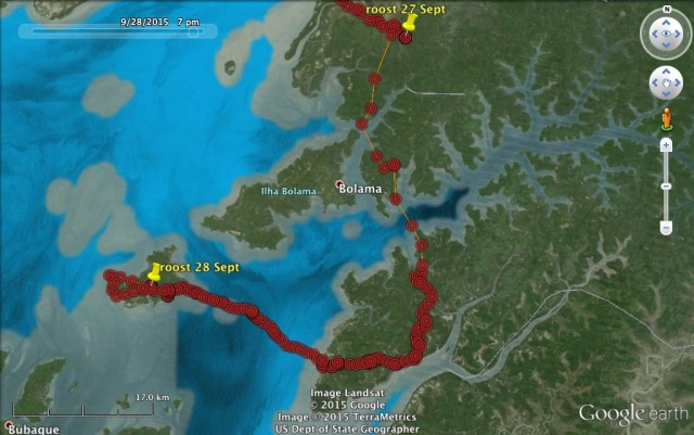 27 Sept: VY heads offshore to the Bijagos Islands