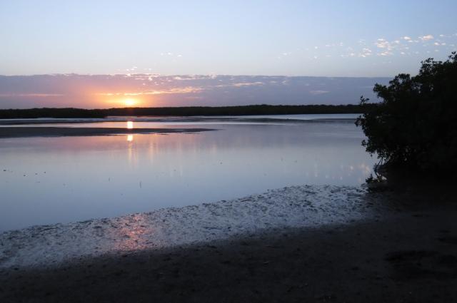 Somone Lagoon, Senegal (c) John Wright