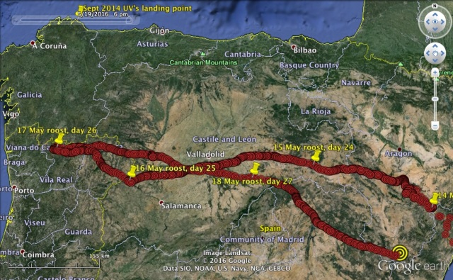 UV travels west across Iberia. And back